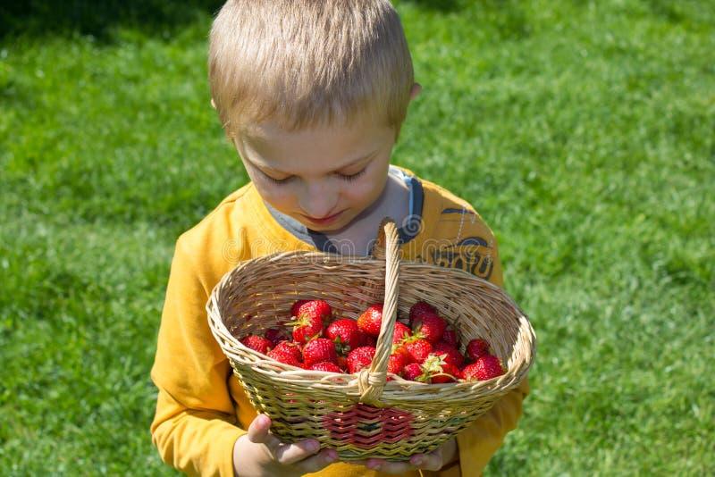 Kind met een mand van aardbeien stock foto