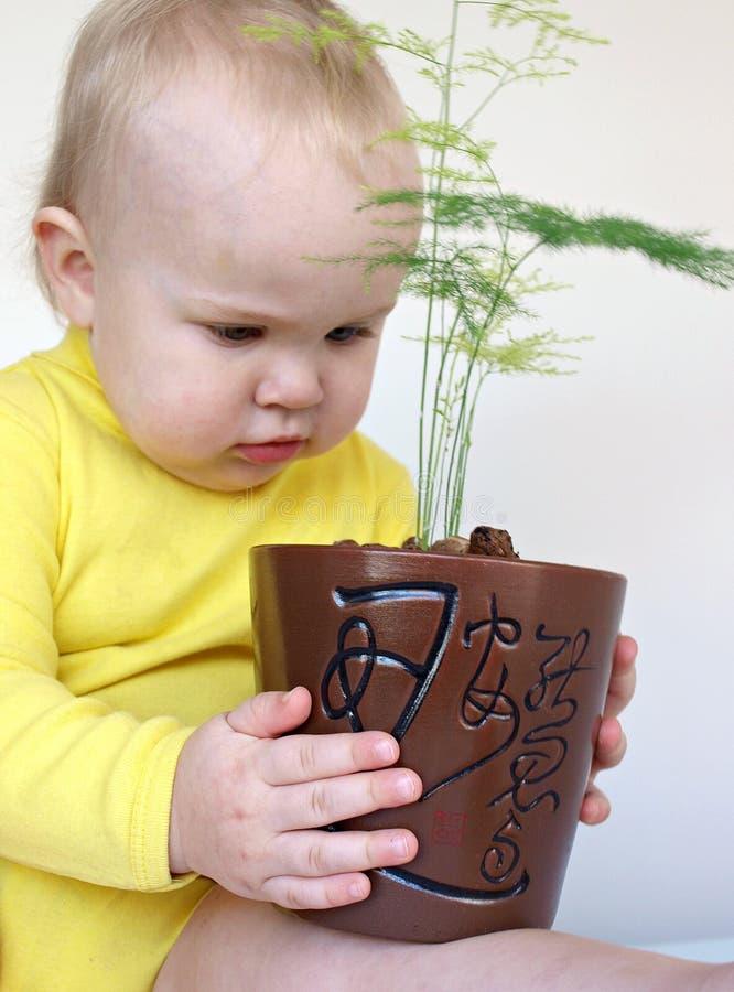 Kind met installatie royalty-vrije stock afbeeldingen
