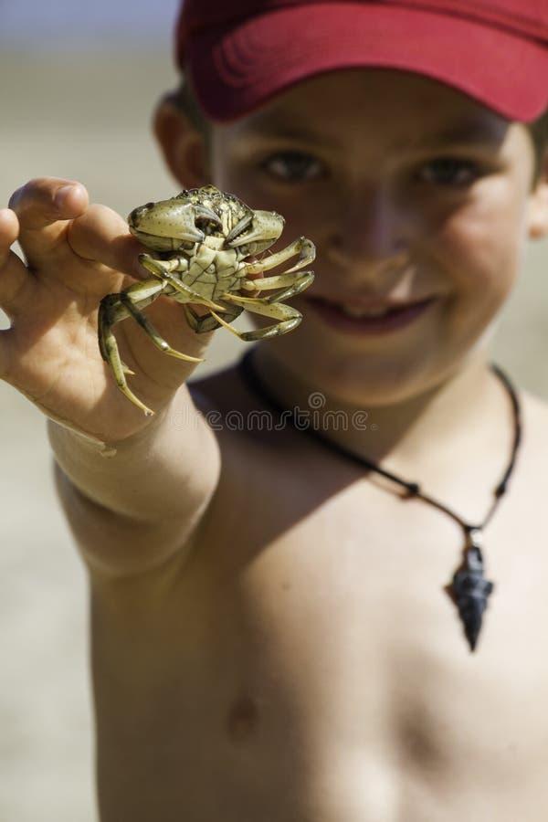 Kind met krab stock fotografie