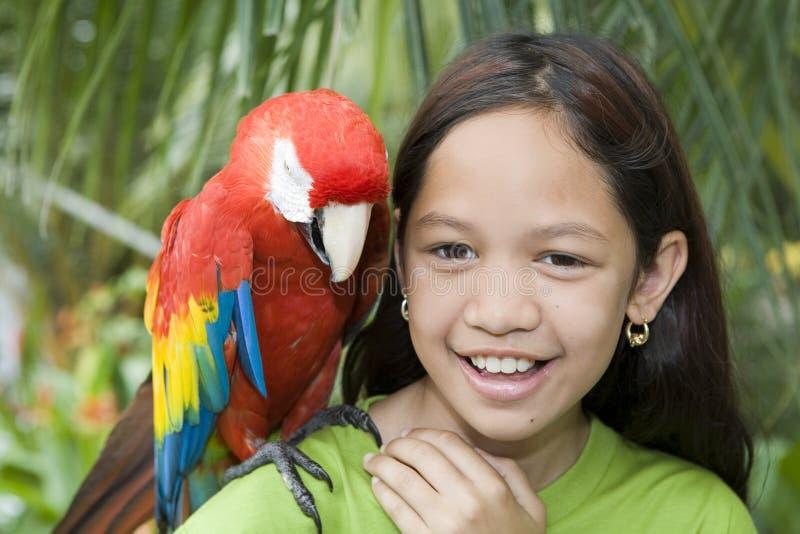 Kind met mooie papegaaien stock fotografie