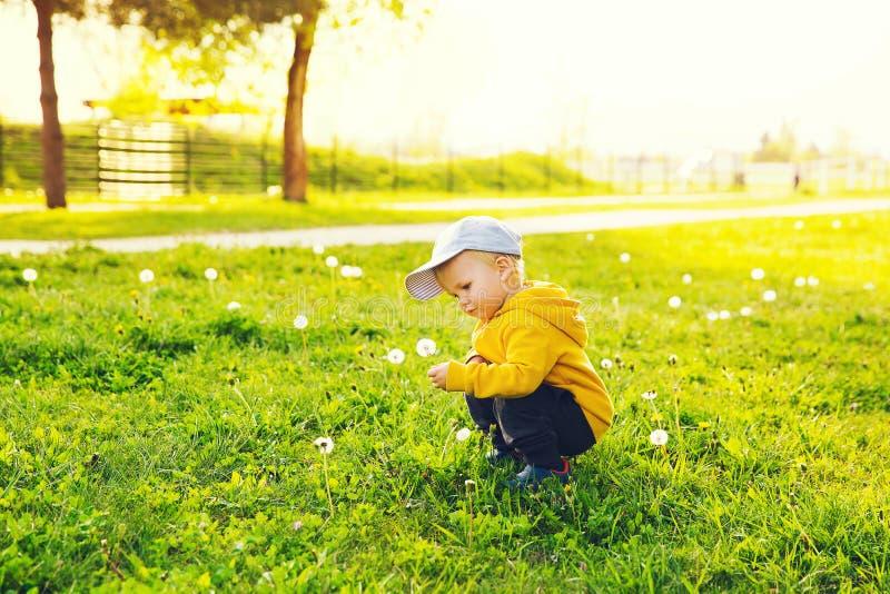 Kind met paardebloemen in het platteland bij de lente stock foto