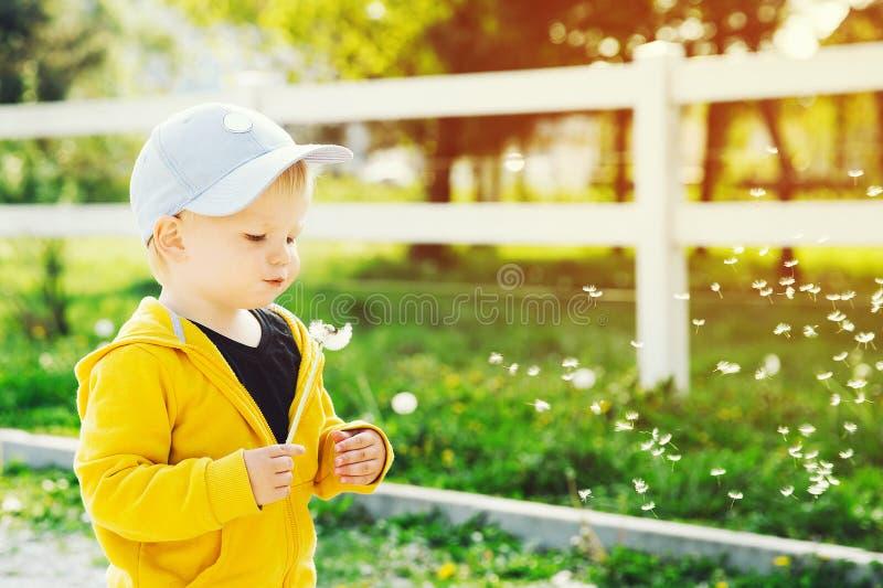 Kind met paardebloemen in het platteland bij de lente royalty-vrije stock fotografie