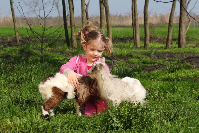 Kind met twee kleine geiten royalty-vrije stock foto's