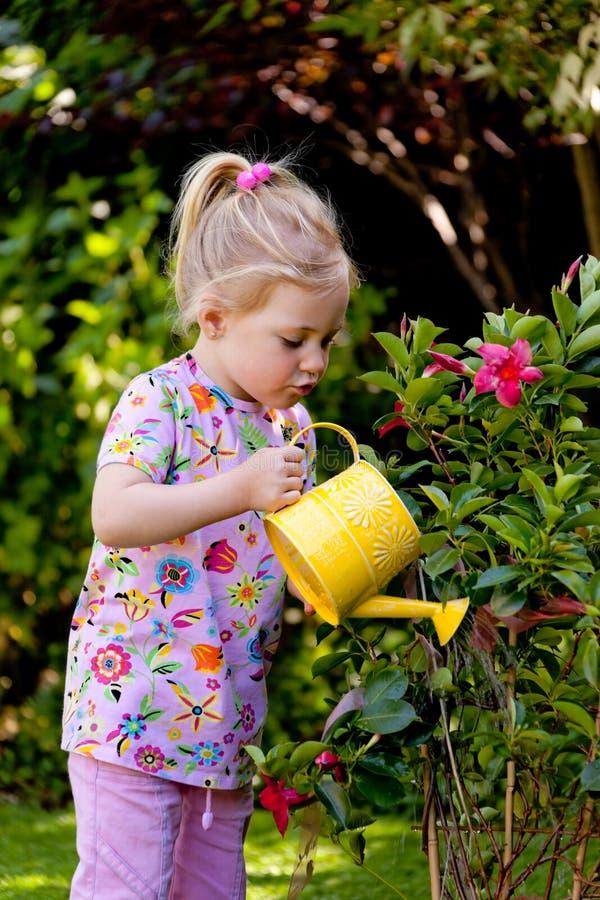 Kind mit einer Bewässerungsdose bei der Bewässerung stockbild