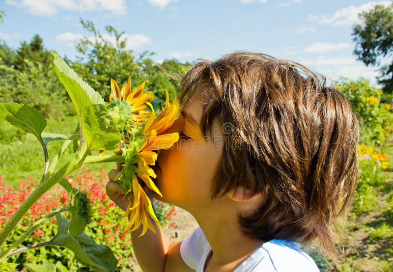 Kind mit Sonnenblume lizenzfreie stockbilder