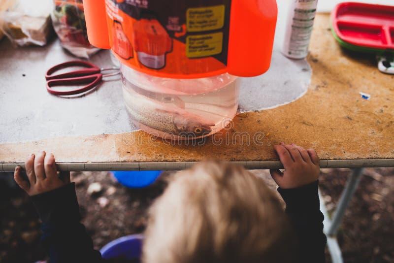 Kind-` s erstes Fische lizenzfreie stockfotografie