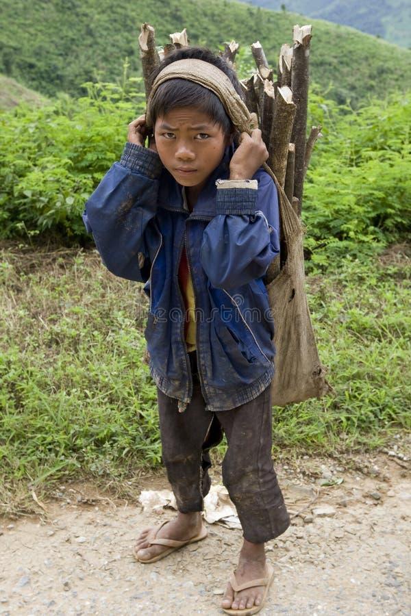 Kind transportiert Brennholz, Laos lizenzfreie stockfotografie