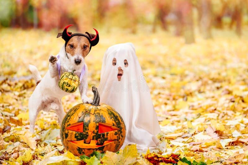 Kind und Hund kleideten in Halloween-Kostümen mit ` Jacks O Laternenkürbisen an lizenzfreie stockfotos