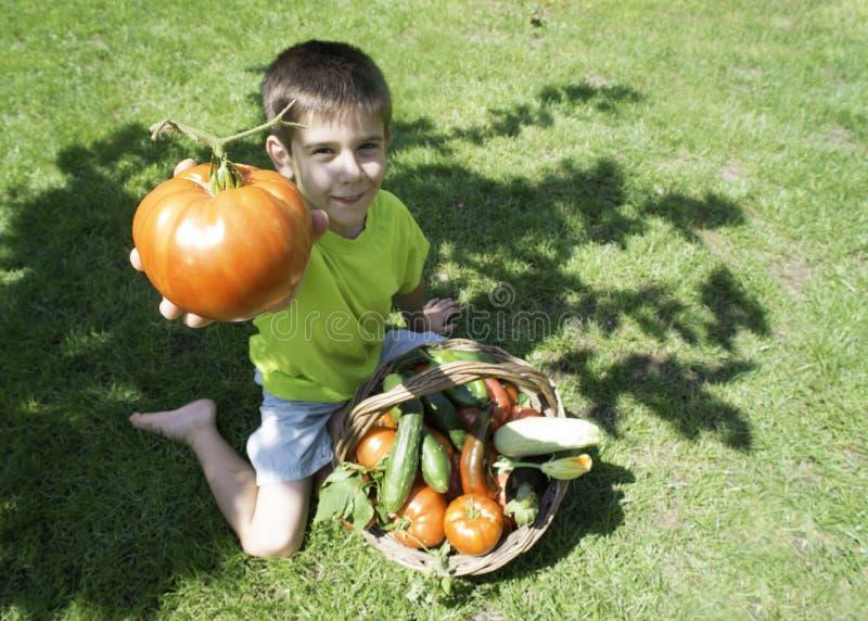 Kind und Korb mit Gemüse stockbild