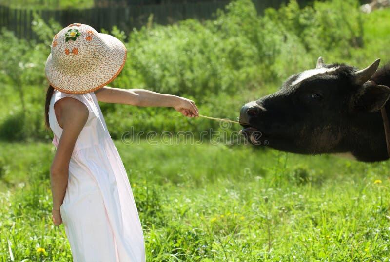 Kind und Kuh lizenzfreie stockfotografie