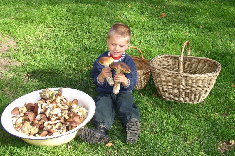 Kind und Natur stockfotografie