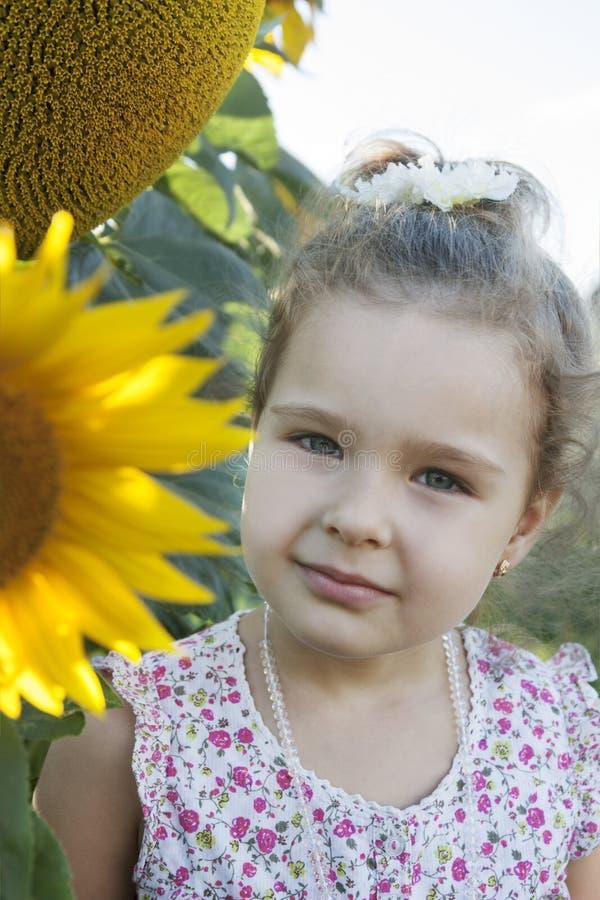 Kind in zonnebloemen stock afbeeldingen