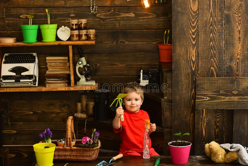 Kindconcept Weinig kind met het tuinieren hulpmiddelen Leuk kind in tuinloods Gelukkige kindtuinman royalty-vrije stock foto's