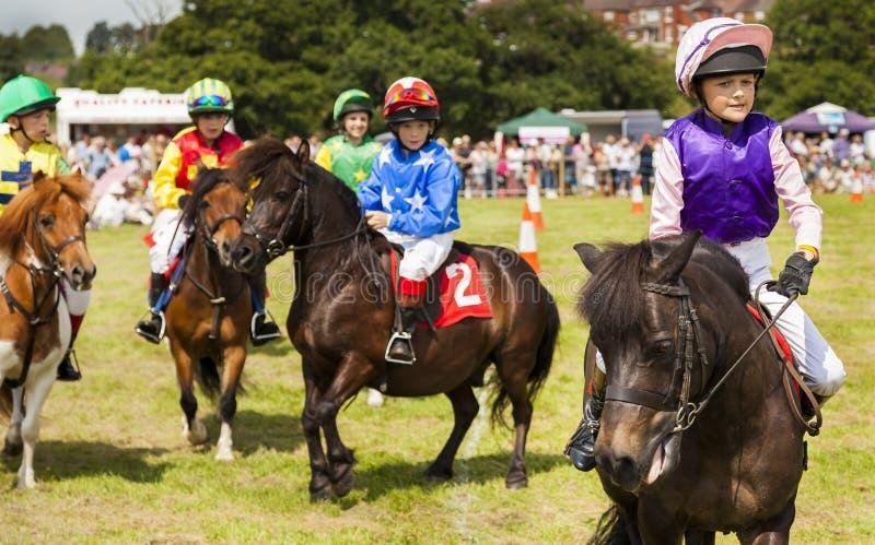 Kinder auf ihren die Shetlandinseln-Ponys lizenzfreies stockbild
