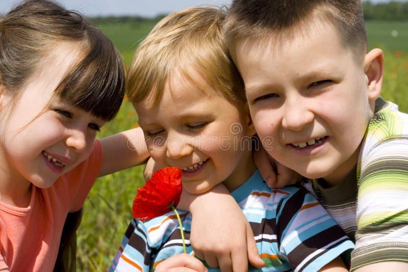 Kinder Auf Wiese Stockfoto