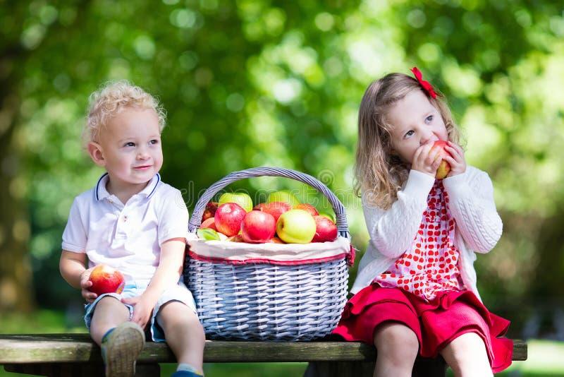 Kinder, die Apfel im Garten essen stockfotos