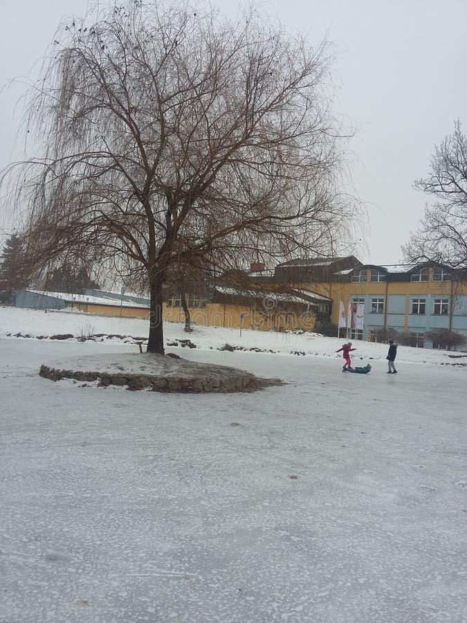 Kinder, die auf gefrorenem See spielen lizenzfreie stockfotos