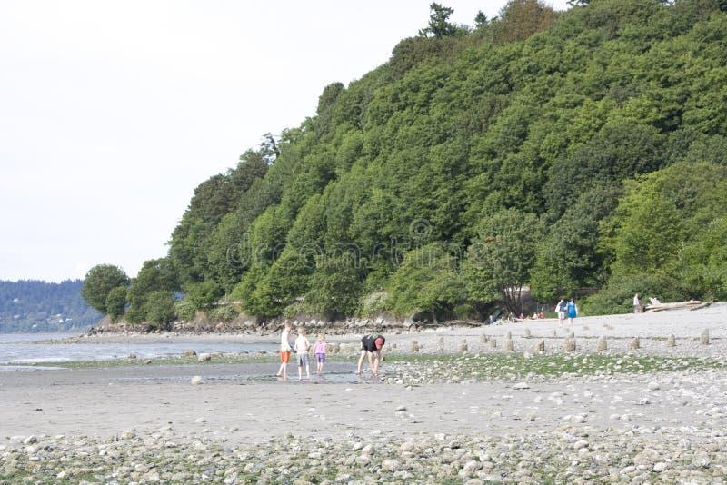 Kinder, die auf Strand spielen lizenzfreie stockfotos