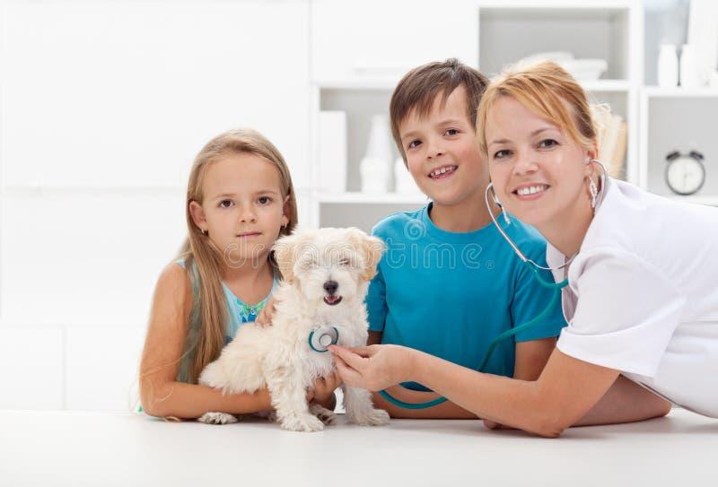 Kinder, die dem Tierarzt ihr Haustier nehmen stockbild