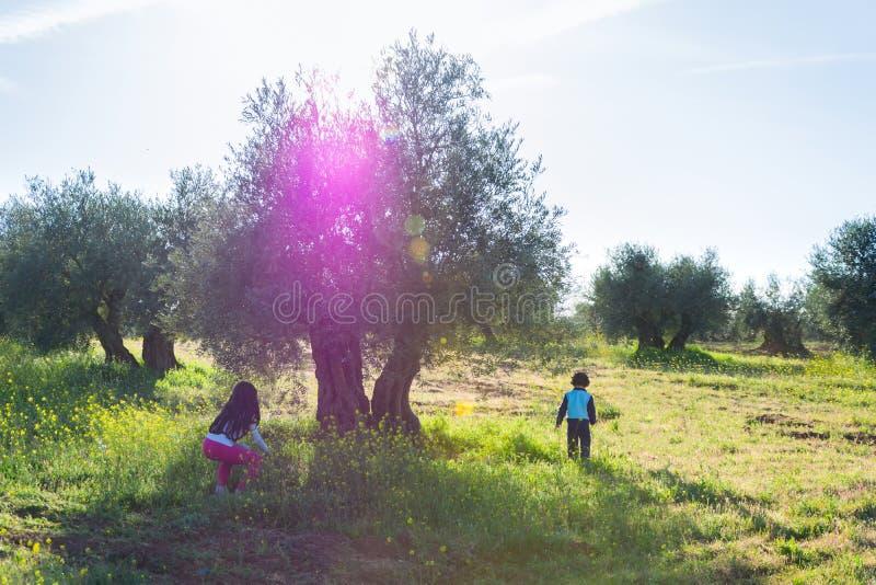 Kinder, die den Frühling genießen stockfotografie