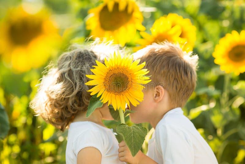 Kinder, die durch Sonnenblume sich verstecken lizenzfreies stockbild