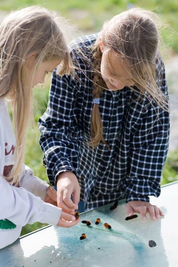 Kinder, die Gleiskettenfahrzeuge studieren. stockfotos