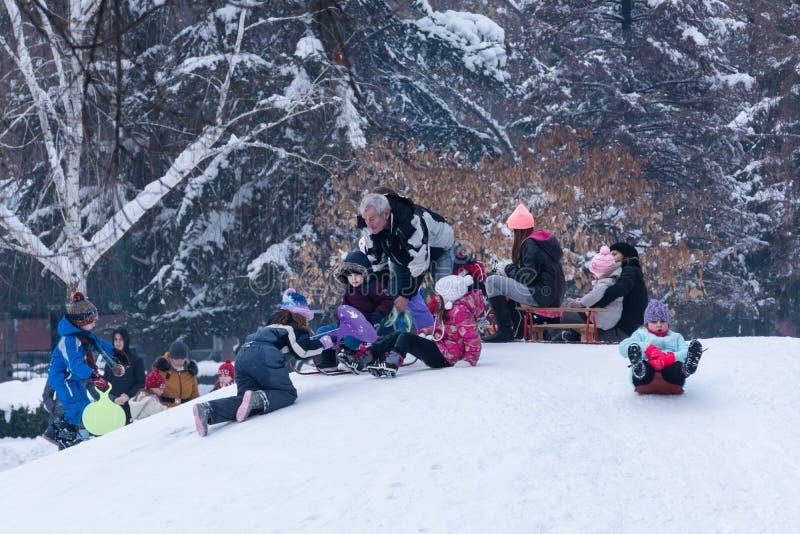 Kinder, die hinunter die Hügel am kalten Wintertag auf Schnee im Stadtpark rodeln stockfotografie