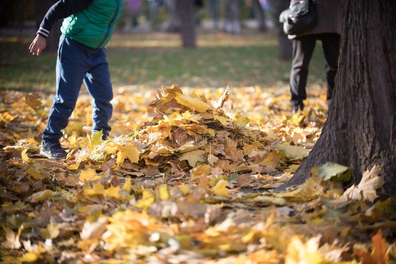 Kinder, die im Herbstpark spielen Haufen von gelben Blättern lizenzfreie stockfotografie