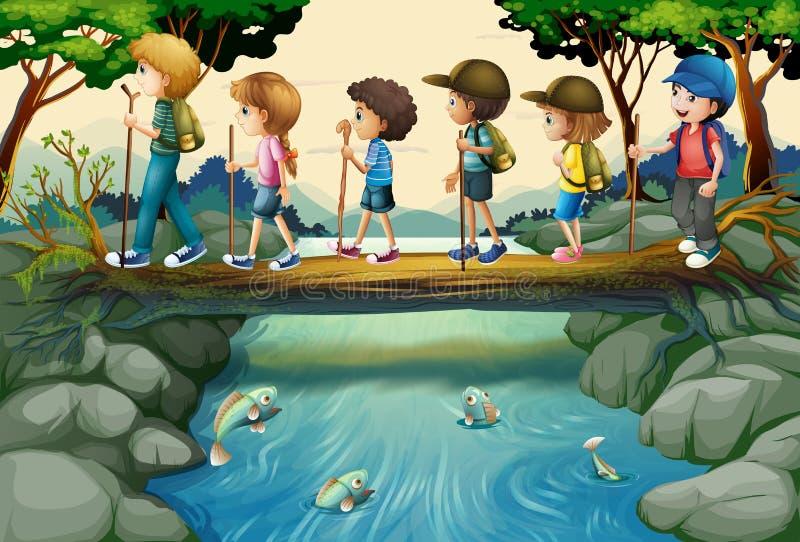 Kinder, die im Wald wandern stock abbildung