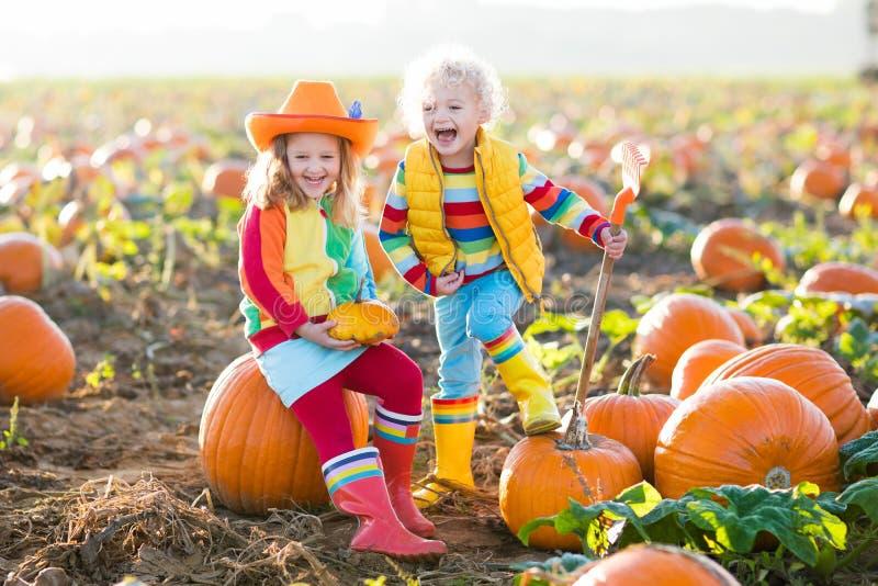 Kinder, die Kürbise auf Halloween-Kürbisflecken auswählen stockfotos