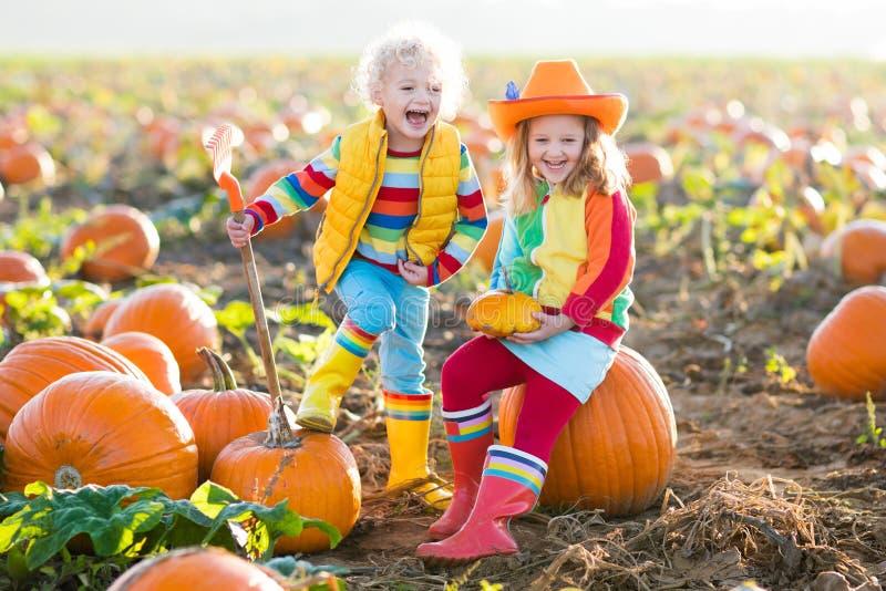 Kinder, die Kürbise auf Halloween-Kürbisflecken auswählen stockbild