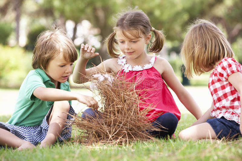 Kinder, die Lager-Feuer errichten lizenzfreie stockfotos