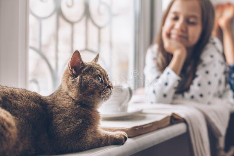 Kinder, die sich mit einer Katze auf einer Fensterbank entspannen lizenzfreie stockfotos