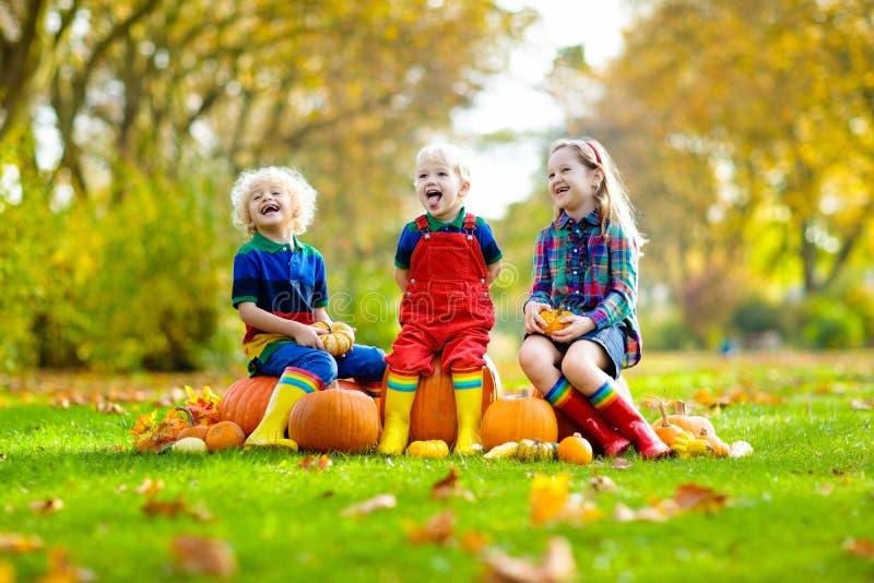 Kinder, die Spaß am Kürbisflecken haben lizenzfreies stockfoto