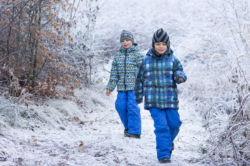 Kinder, die in Wald im Winter gehen stockbilder