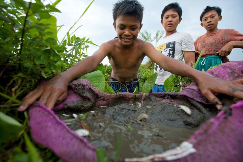 Kinder fangen kleine Fische in einem Abzugsgraben ab stockbild