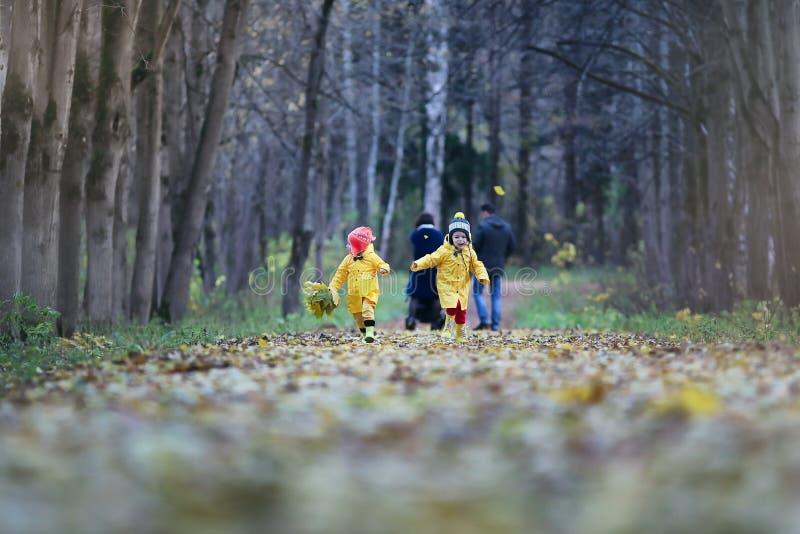 Kinder gehen in den Herbstpark stockfotografie