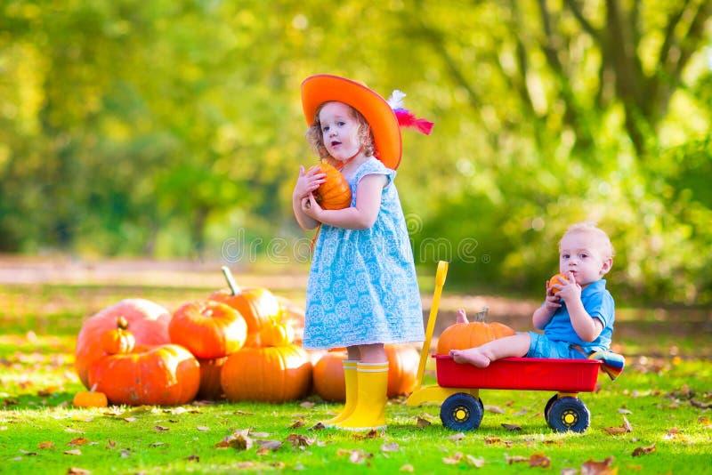 Kinder am Kürbisflecken stockbilder