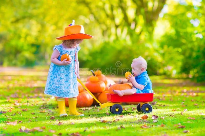 Kinder am Kürbisflecken stockbild