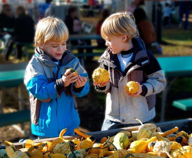 Kinder am Landwirt-Markt, der Gemüse vorwählt lizenzfreie stockfotografie