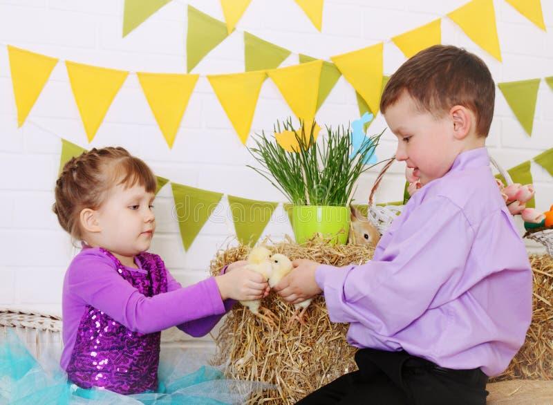 Kinder mit Hühnern stockbilder
