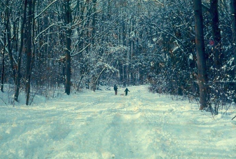 Kinder mit Schlitten im Schnee lizenzfreie stockfotos