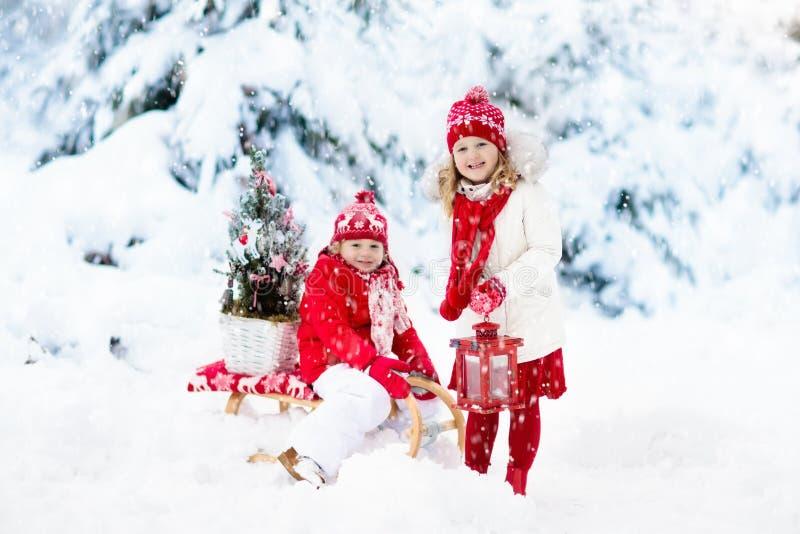 Kinder mit Weihnachtsbaum Schneewinterspaß für Kinder stockbild