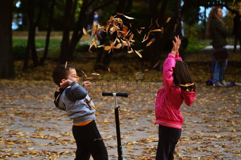 Kinder spielen in Herbsttage stockfotografie