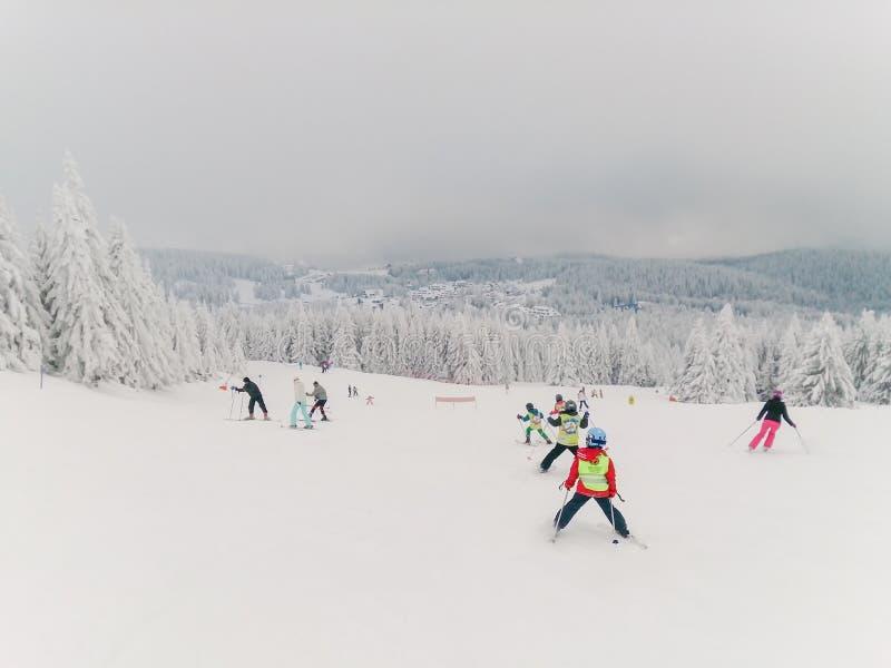Kinder und einige Erwachsene auf dem Ski lizenzfreie stockbilder