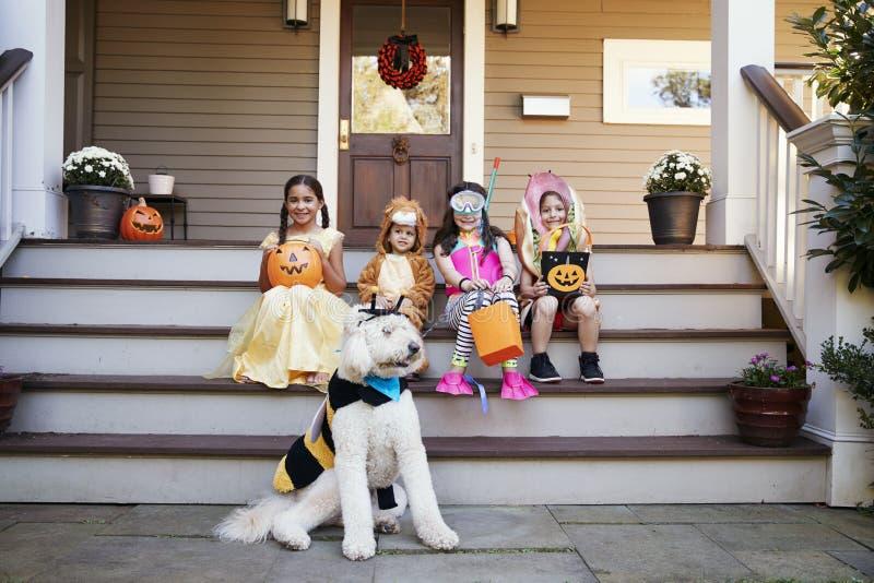 Kinder und Hund in Halloween-Kostümen für Trick oder die Behandlung lizenzfreie stockbilder