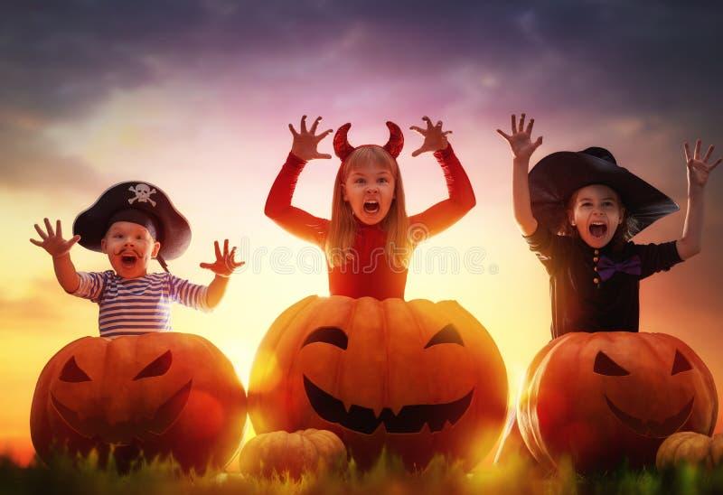 Kinder und Kürbise auf Halloween stockbild