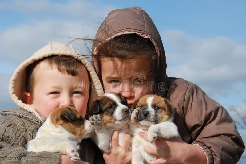 Kinder und Welpen stockbild