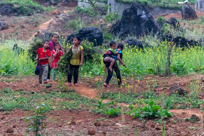 Kinderarbeidlandbouw Vietnam stock foto's