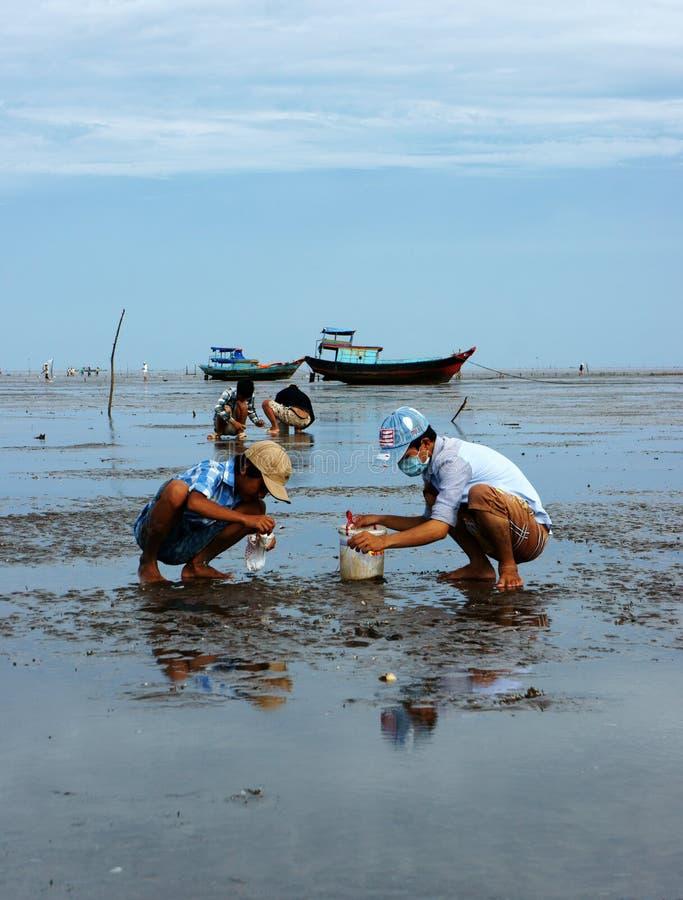 Kinderarbeit auf Vietnam-Strand stockfotos